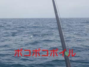 ファイル 2366-4.jpg